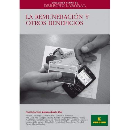 CTDL N° 10: La Remuneración y otros Beneficios